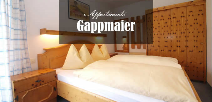 Appartements in Flachau - Haus Gappmaier
